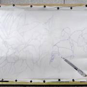 обводим контур рисунка