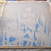 влажный фон и ввод голубого